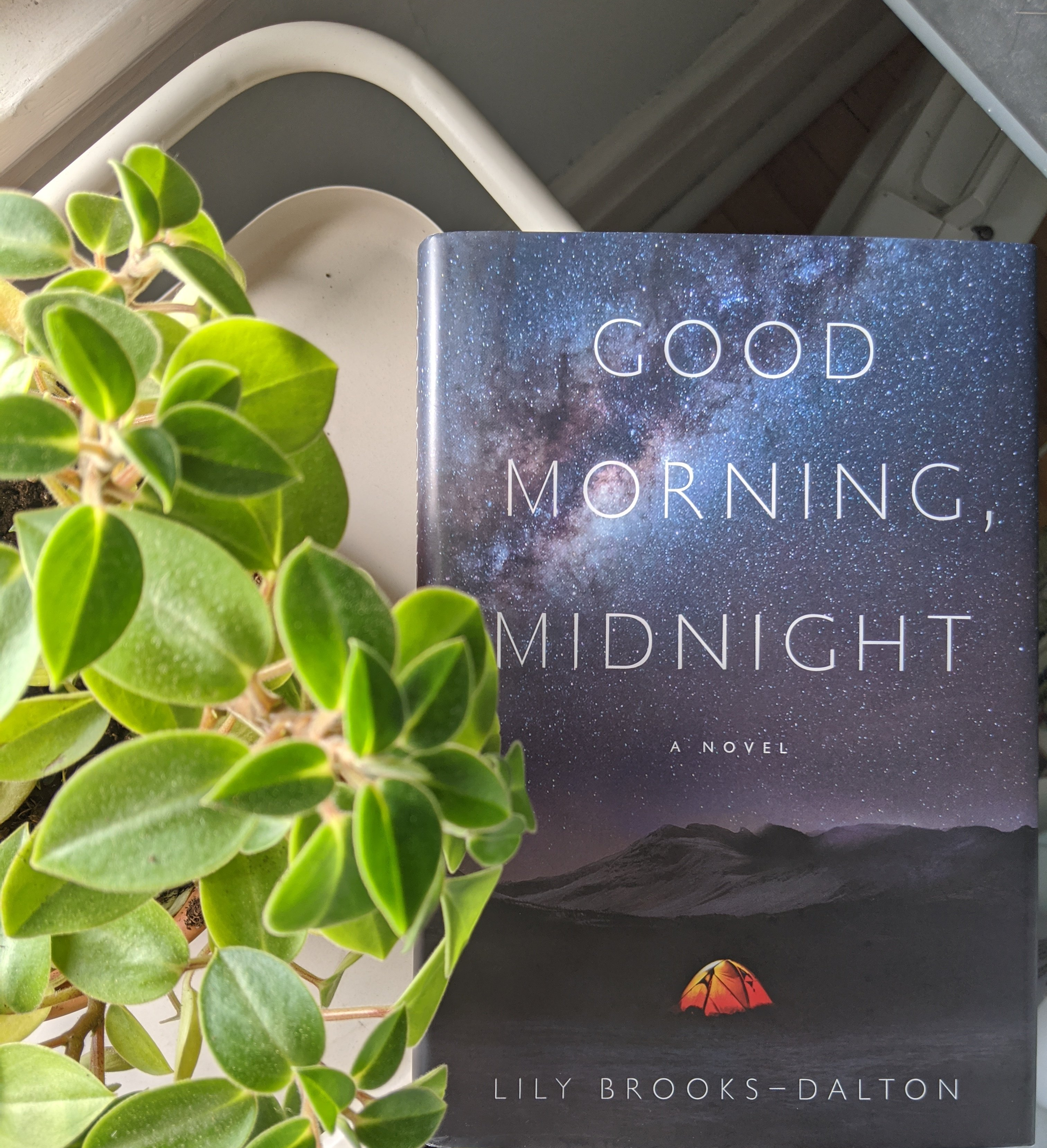 A picture of the book good morning midnight. The cover depicts a single orange tent in the middle of what looks to be an arctic tundra, with an incredible bright and star filled sky above them. In the background there are a few mountains. To the left of the book there is a plant.